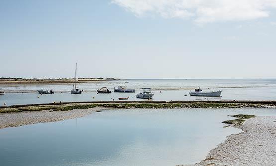 Harvesting salt from the Ile de Ré