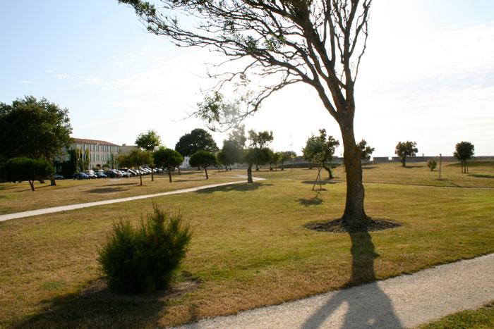 paysage saint Martin près camping île Ré