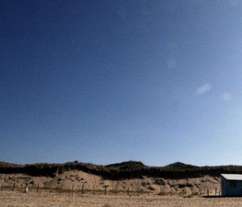 vignette bois plage camping île Ré