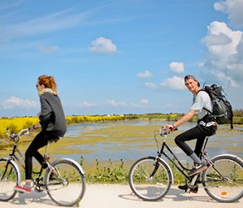camping in the centre of the cycle paths of the ile de ré