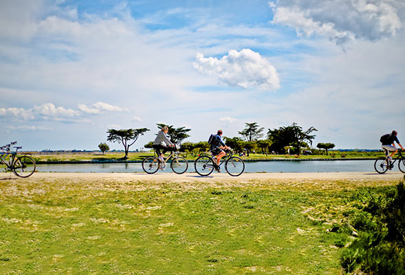 camping close to the cycle paths of the île de ré